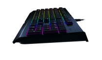 RAZER Cynosa V2 Chroma (German) - 3