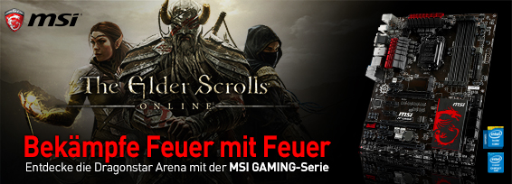Banner The Elder Scrolls