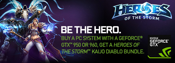 Banner Heroes of the Storm